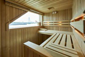 MS VistaSky Sauna
